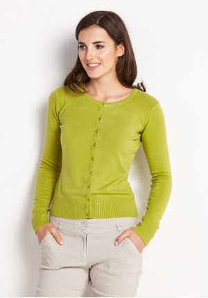 Classic Light Green Sweater