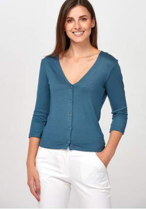 Blue Sweater with V-neckline